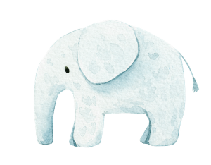 Elefant Illustration